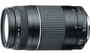 most popular canon lenses